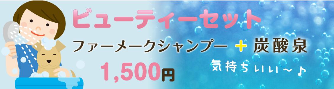 ビューティセット。ファーメークシャンプー+炭酸泉が1500円